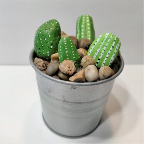 DIY Painted Cactus Rocks - Easy and Simple craft to do with kids and teens.